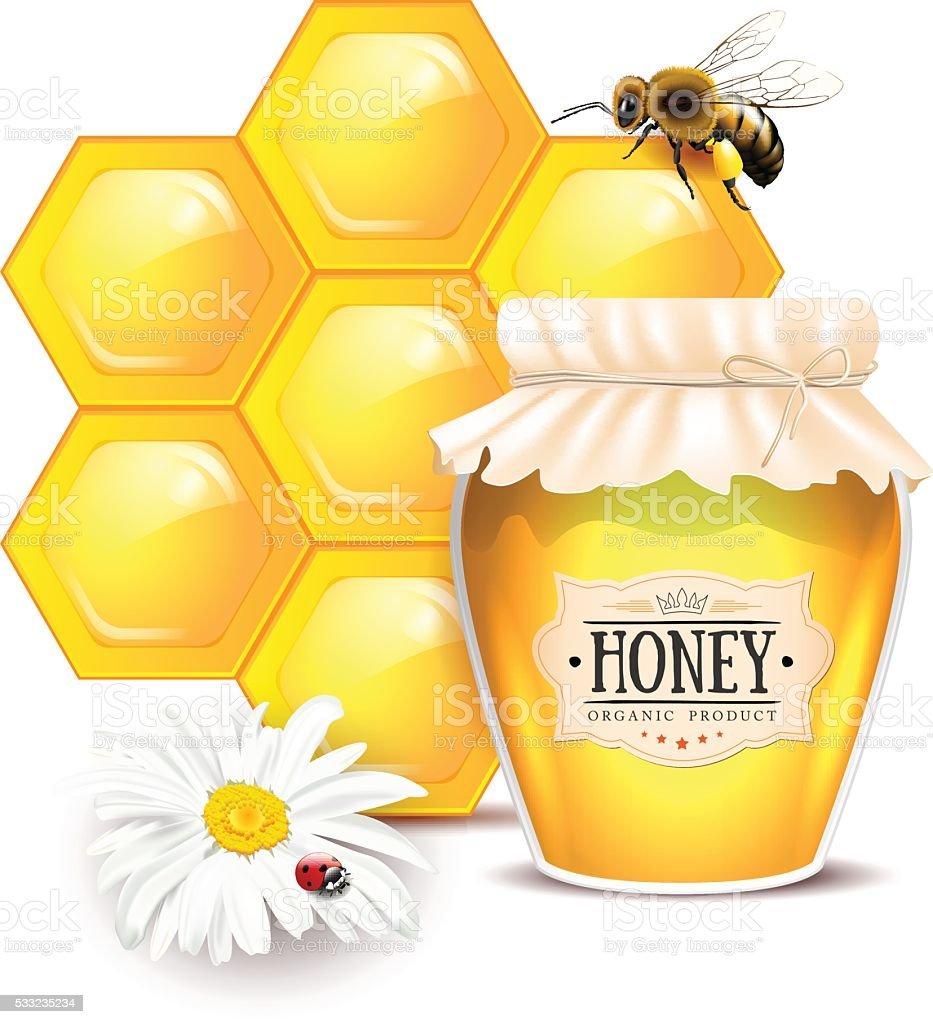 Still life with honey concept vector art illustration
