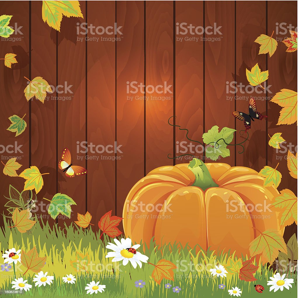 still life with pumpkin for your design royalty-free stock vector art