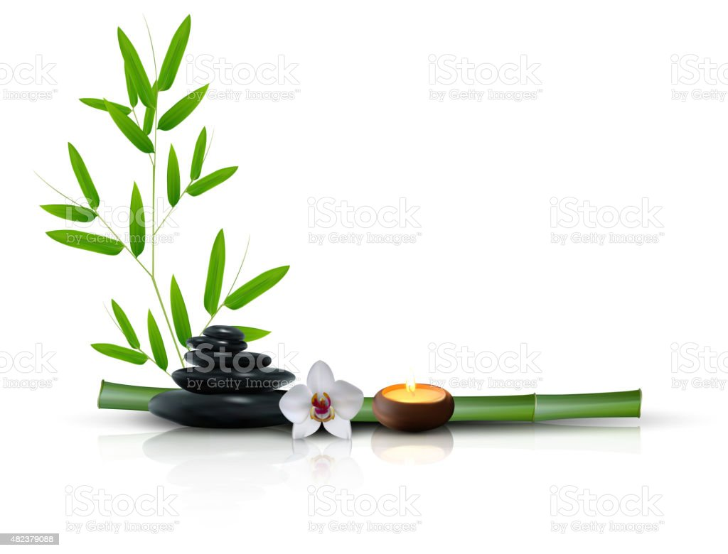 Stone, flower and bamboo isolated background vector art illustration