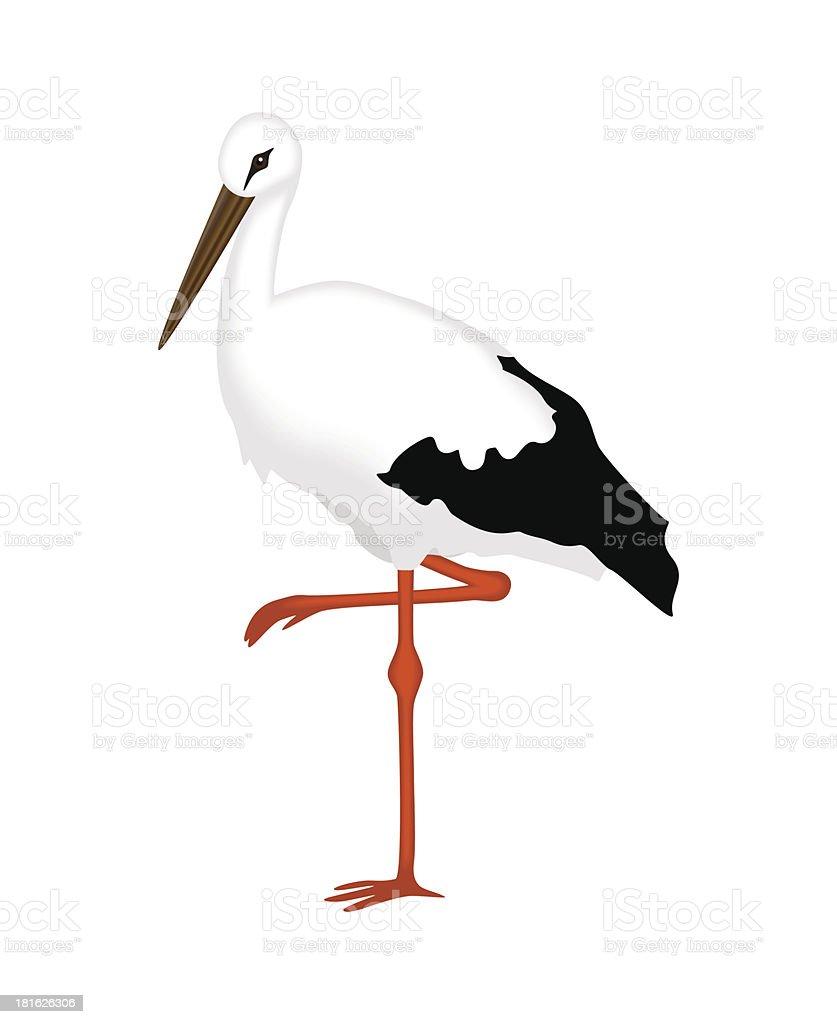 Stork of white background royalty-free stock vector art