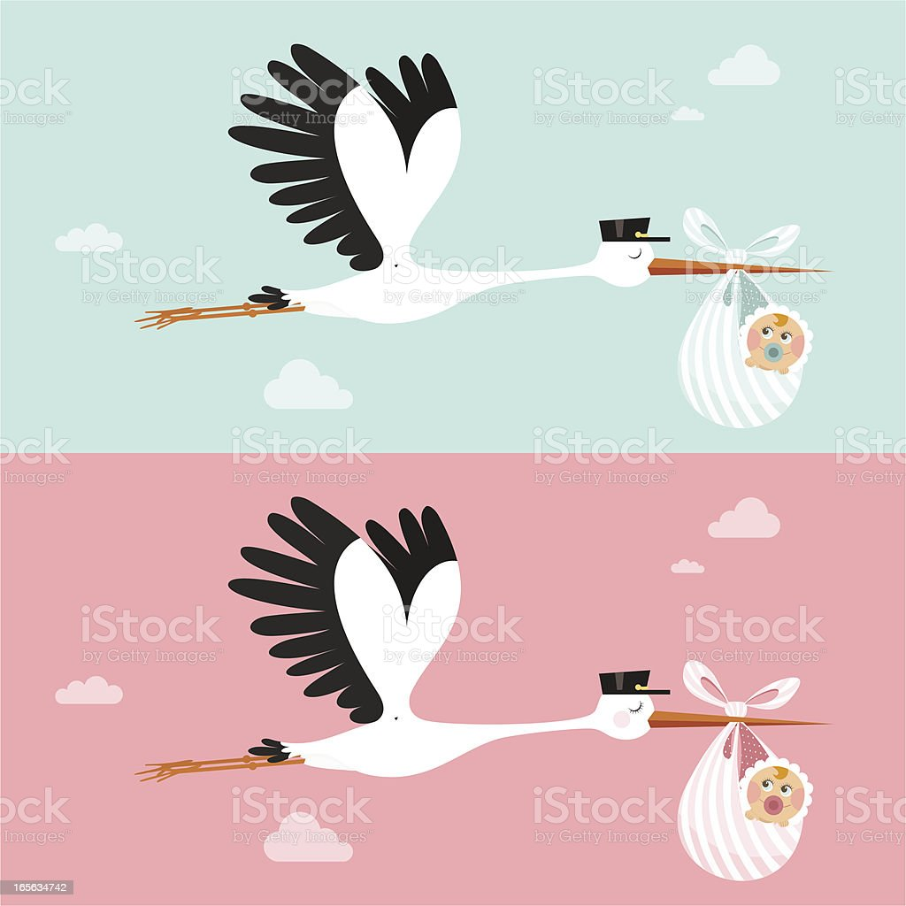 Stork vector art illustration