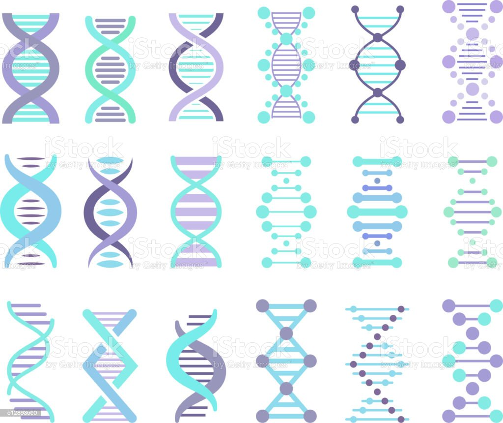 DNA Strands Set vector art illustration