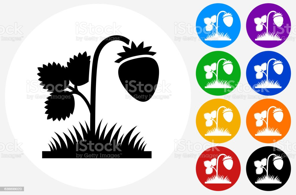 Strawberries Icon on Flat Color Circle Buttons vector art illustration