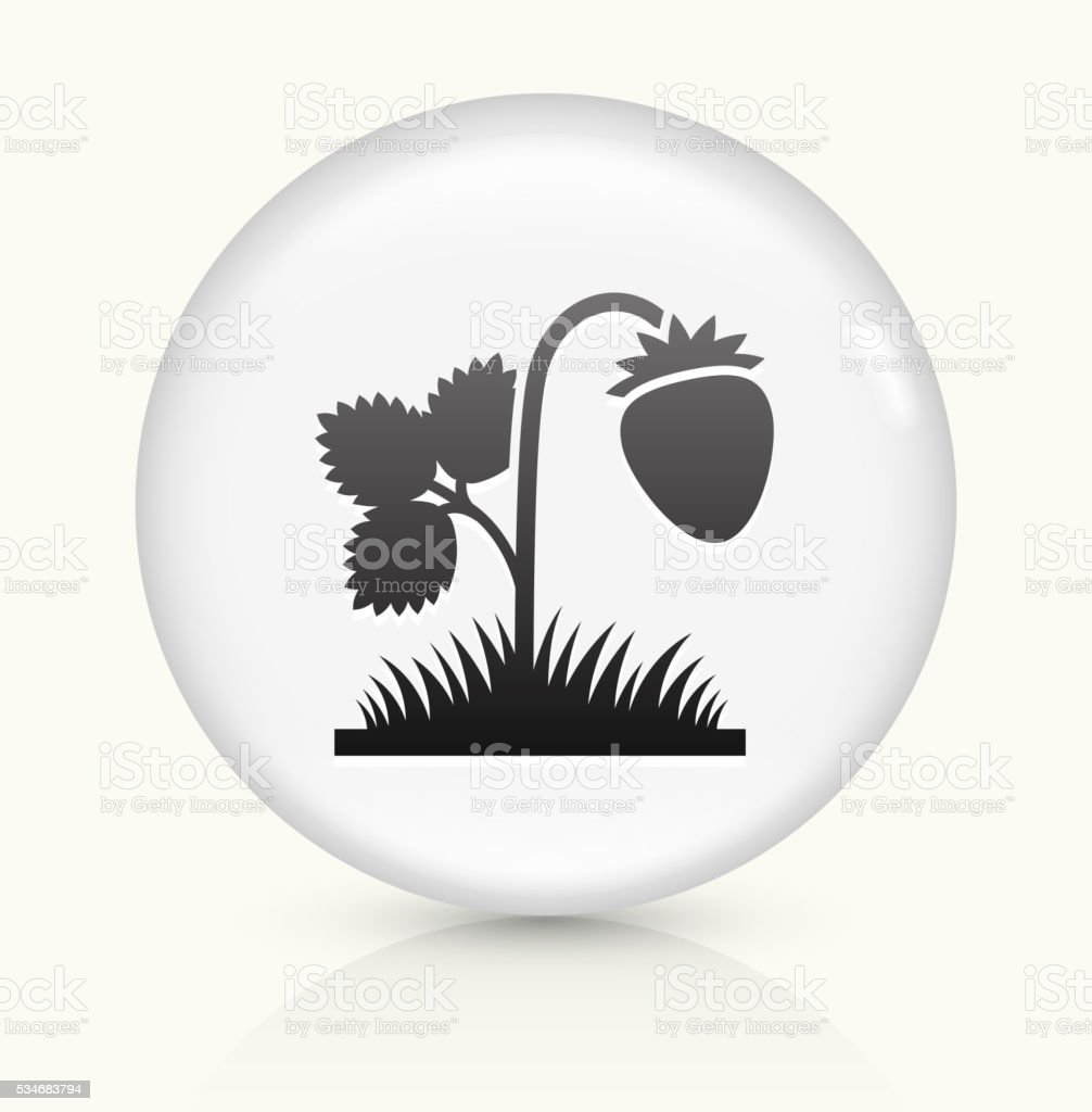 Strawberries icon on white round vector button vector art illustration