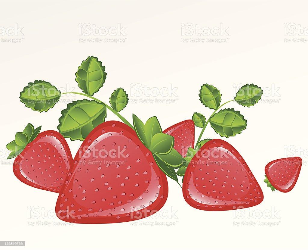 Strawberries vector art illustration