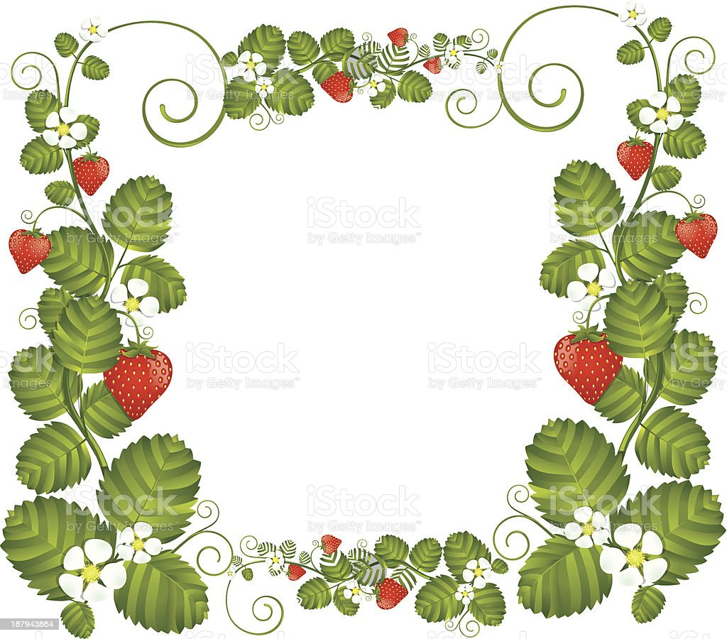 Strawberry floral frame royalty-free stock vector art