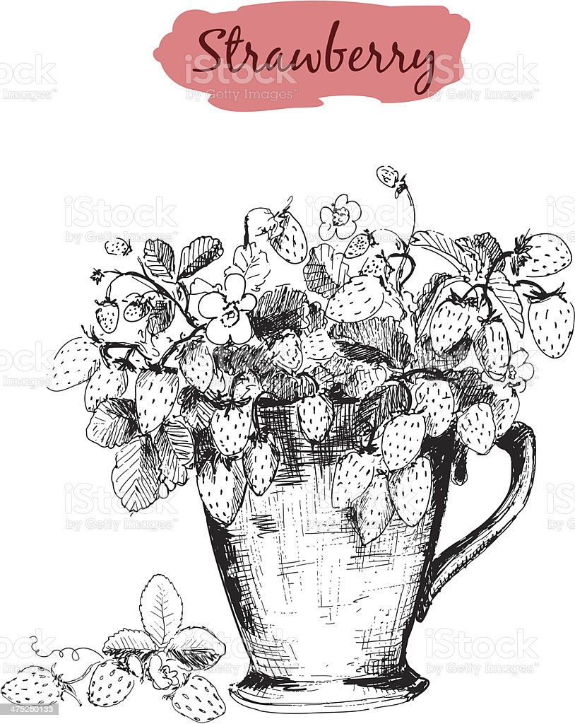 Strawberry in a cup vector art illustration