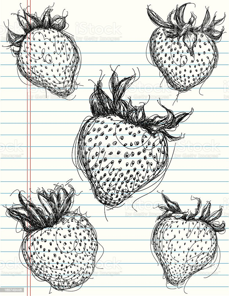 strawberry sketches royalty-free stock vector art