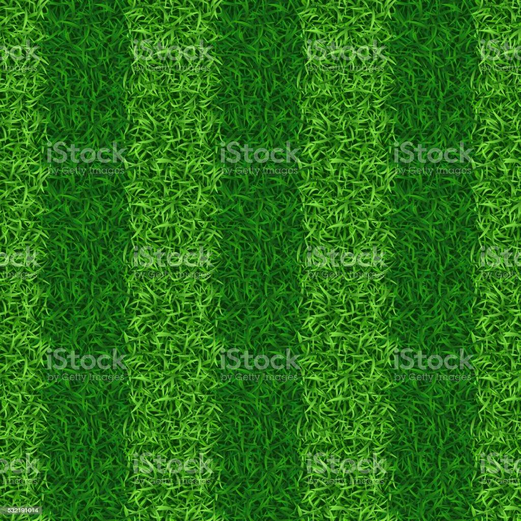 Striped green grass field seamless vector vector art illustration