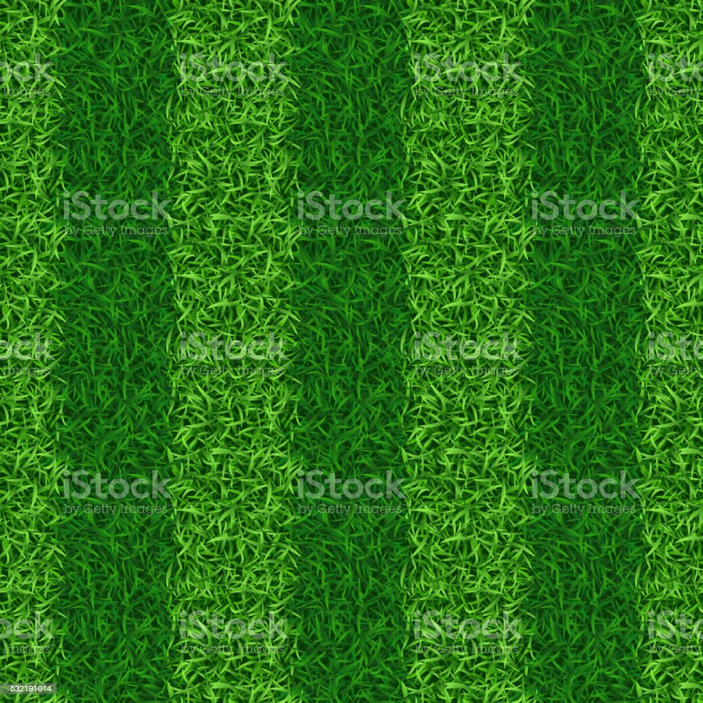 Striped green grass field seamless vector vector art illustration