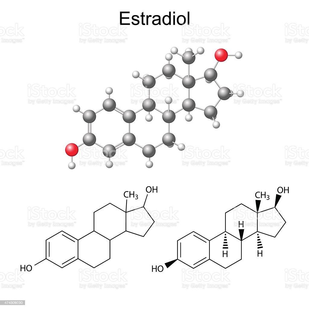 Structural chemical formulas and model of estradiol molecule vector art illustration