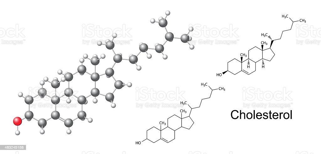 Structural formulas and model of cholesterol (cholesterine) mole vector art illustration