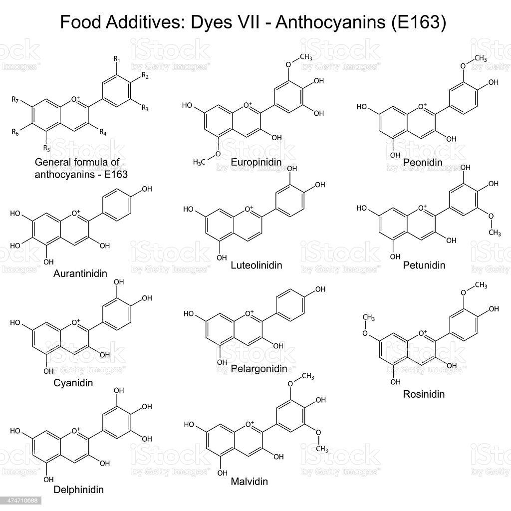 Structural formulas of food additives - anthocyanins vector art illustration