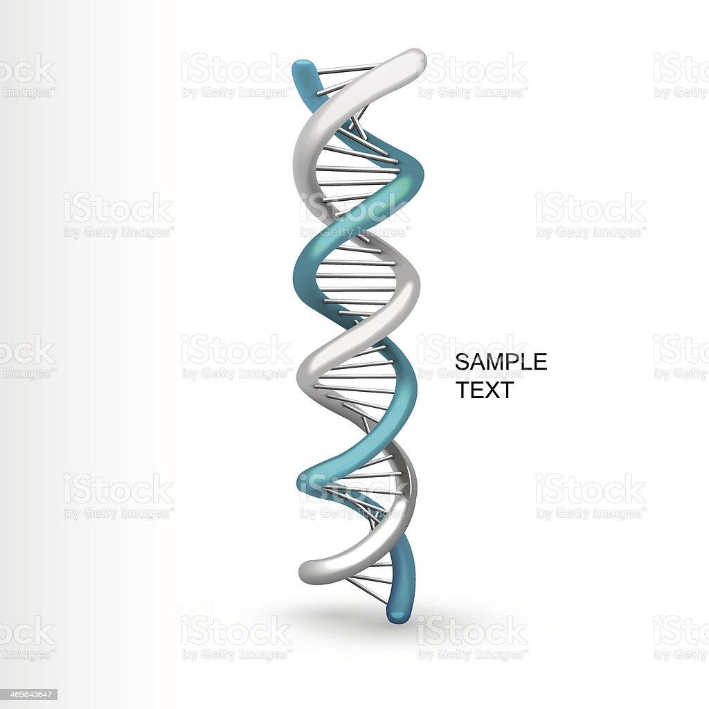 3D DNA structure model on white vector art illustration
