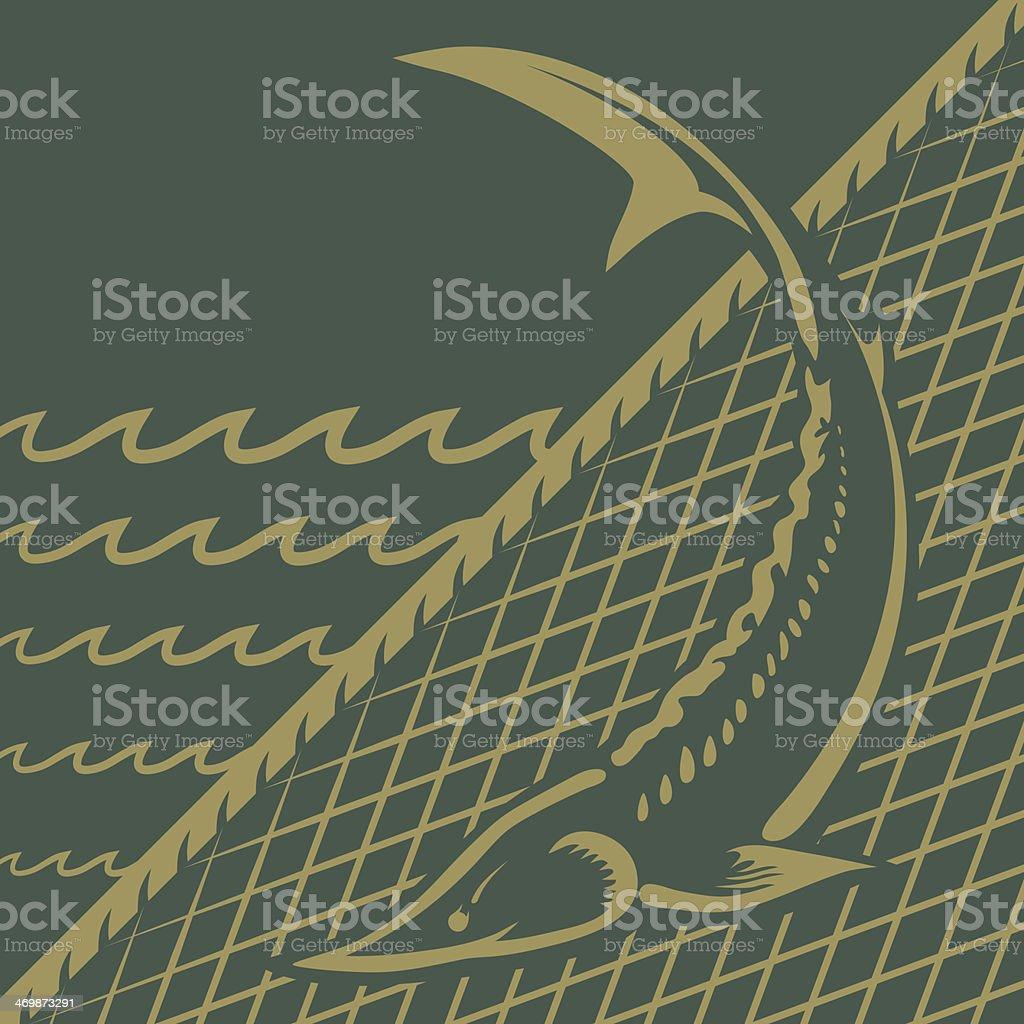 Sturgeon fishing vector art illustration