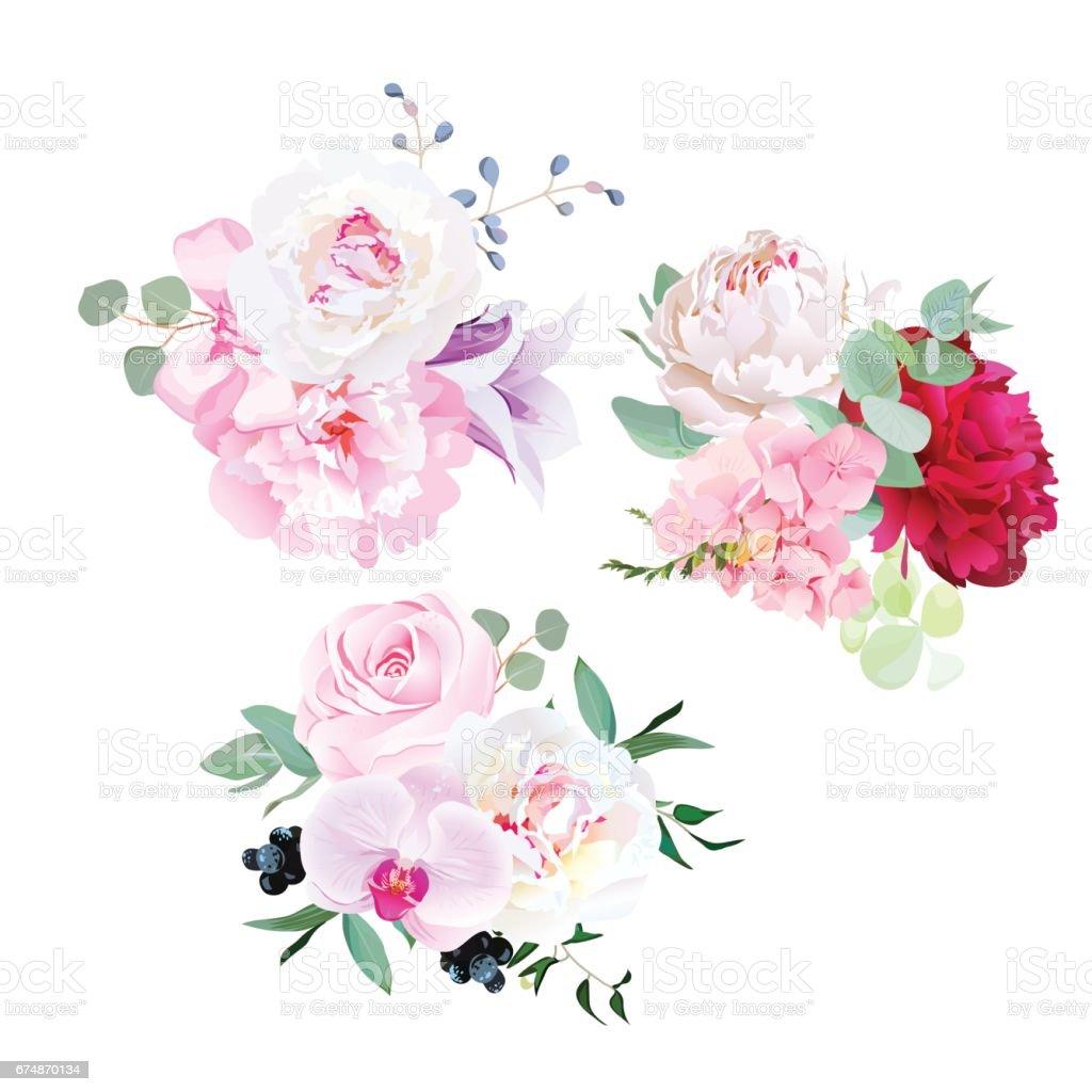 Stylish mix of seasonal bouquets vector design set vector art illustration