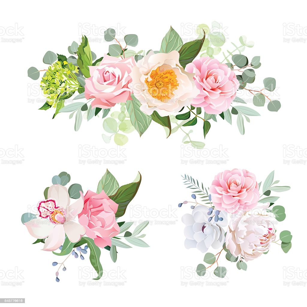Stylish various flowers bouquets vector design set vector art illustration