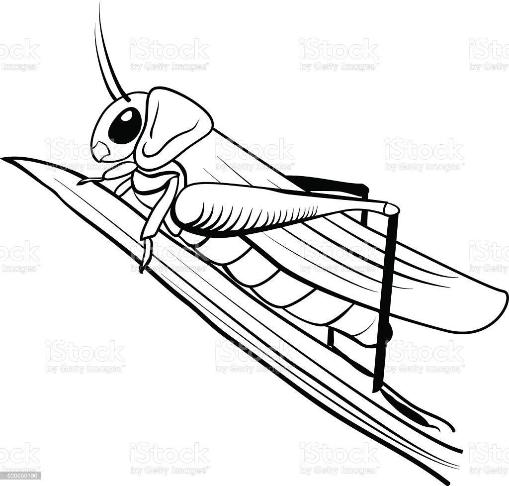 stylized  cartoon locust vector art illustration
