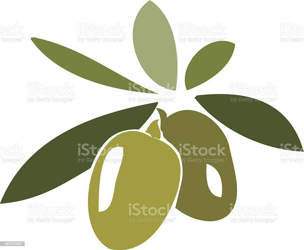 Stylized cartoon of olives on a branch vector art illustration