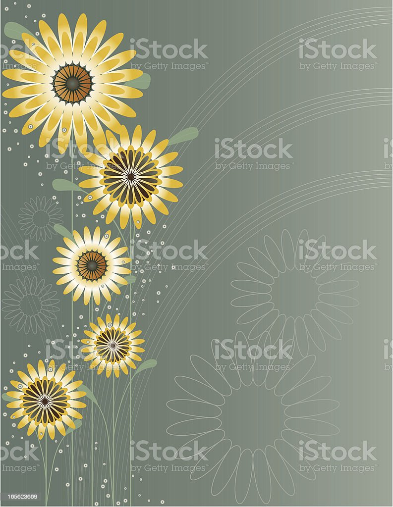 Stylized Daisies Floral Design with Baby's Breath Accents and Background vector art illustration