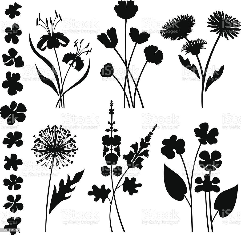 Stylized garden flowers vector art illustration