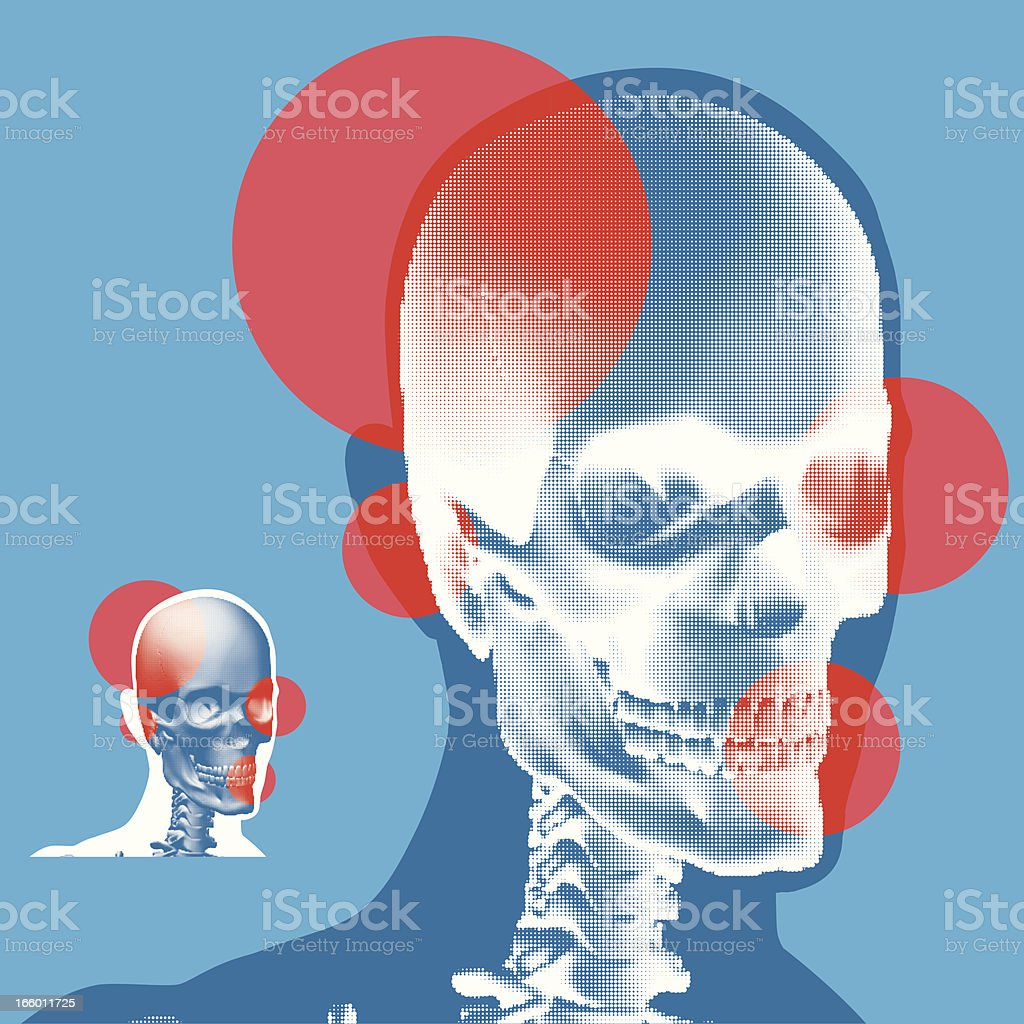 Stylized Skull XRay View royalty-free stock vector art