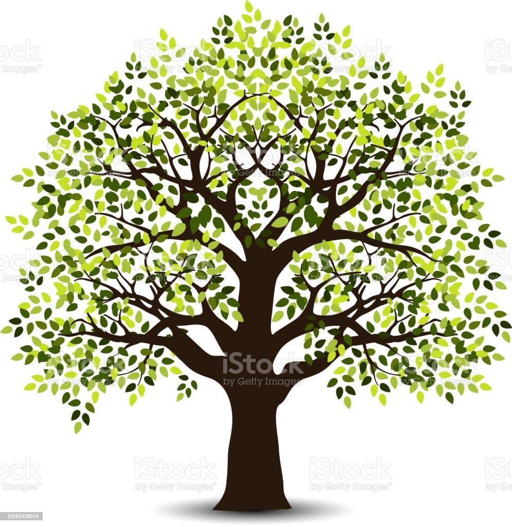 stylized tree for your design vector art illustration