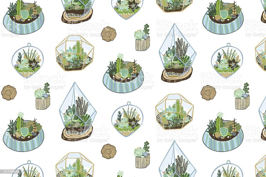 succulent cactus terrarium vector color hand drawing pattern vector art illustration