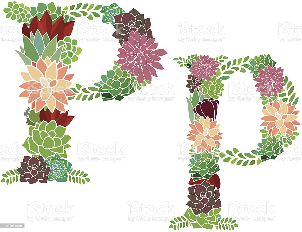 Succulent letter P and p royalty-free stock vector art