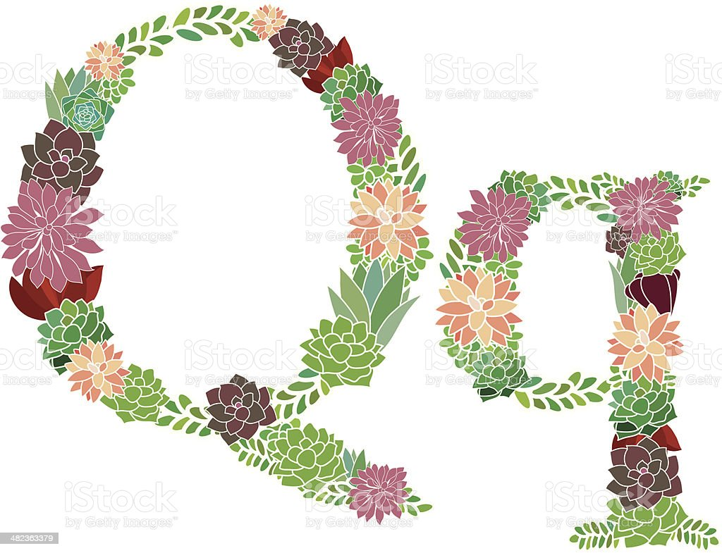 Succulent letter Q and q royalty-free stock vector art
