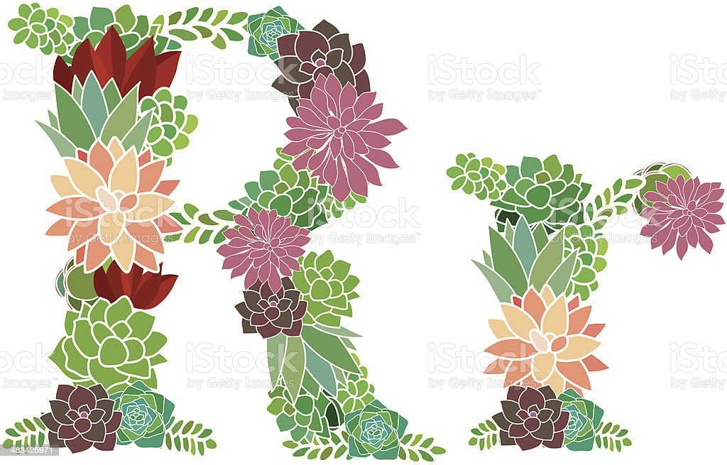 Succulent letter R and r royalty-free stock vector art