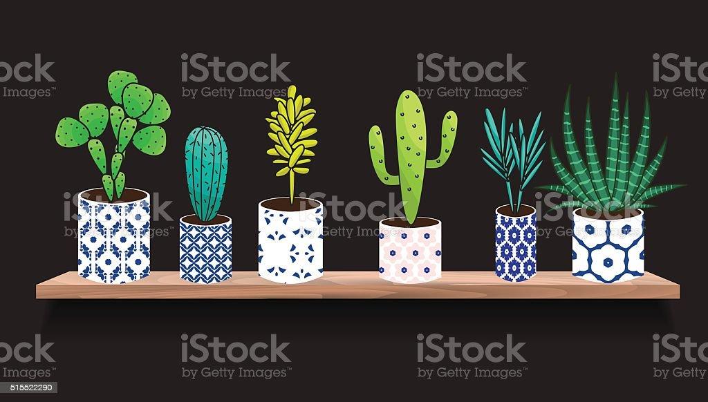 Succulents and cactus plants in pots vector art illustration