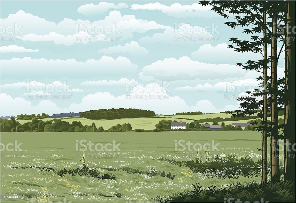 Suffolk woodland. royalty-free stock vector art
