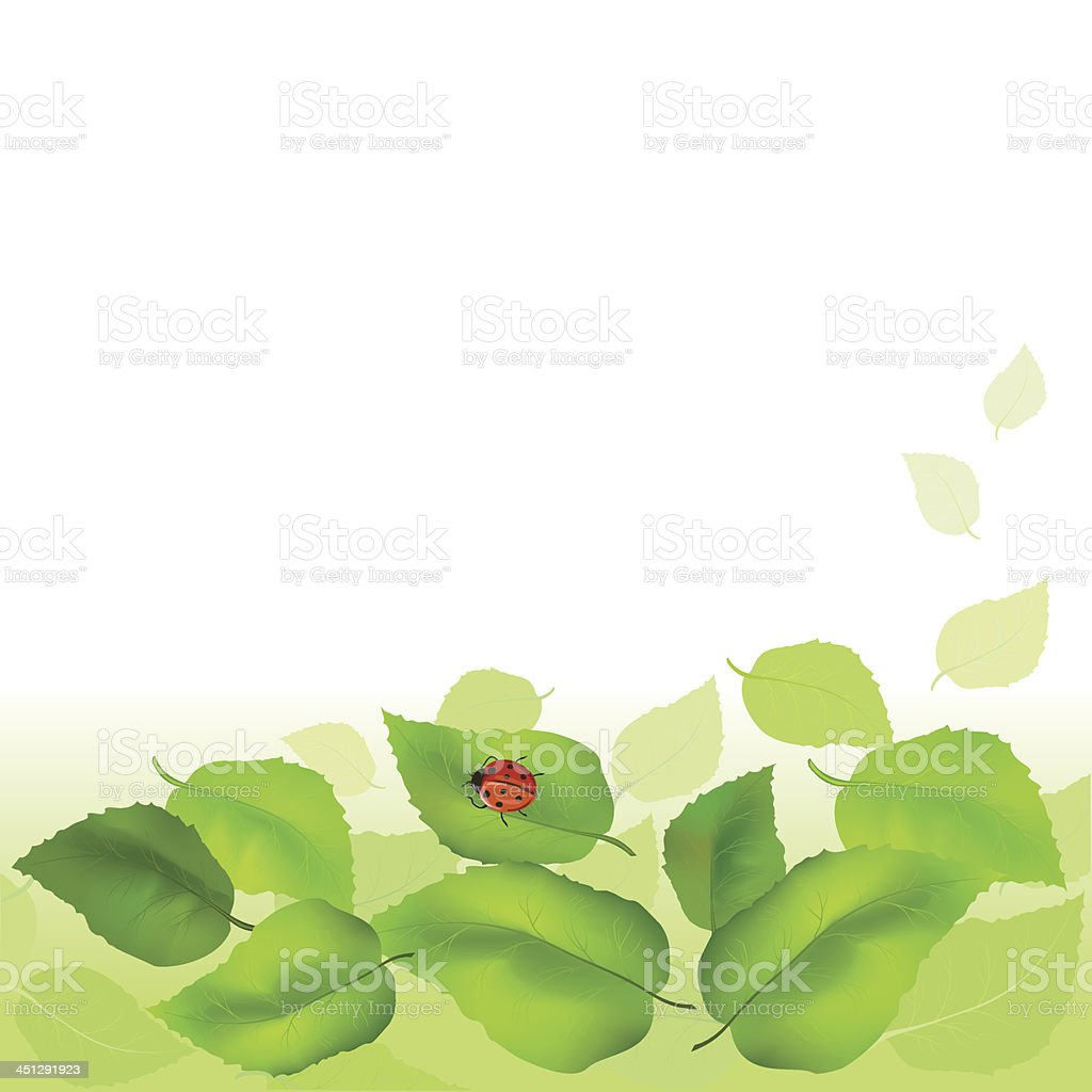 Summer background with green leaves royalty-free stock vector art