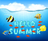 Summer background with tropical fish