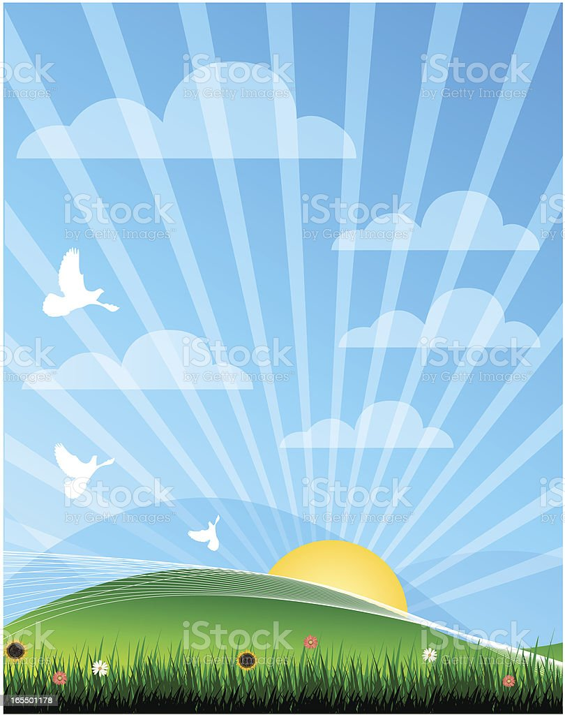 Summer Field royalty-free stock vector art