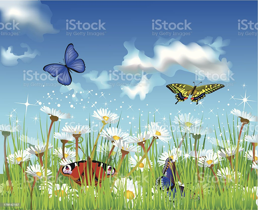 summer field with butterflies royalty-free stock vector art
