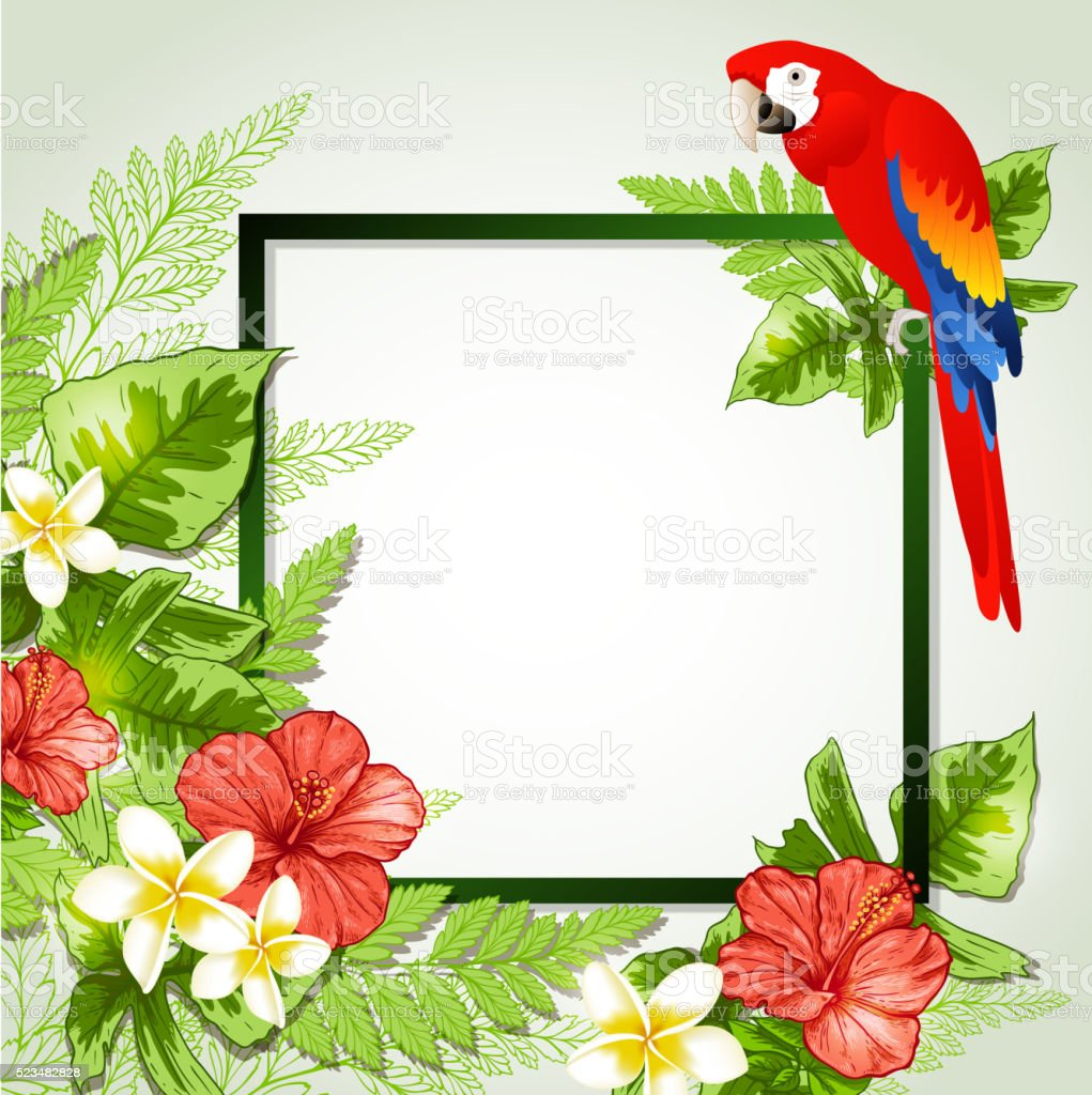 Summer floral frame vector art illustration