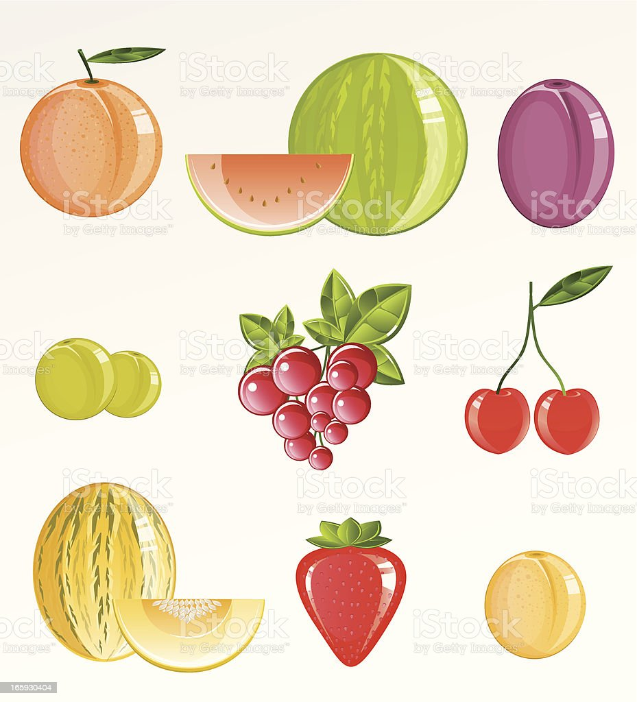 Summer Fruits vector art illustration