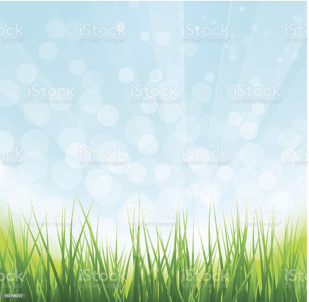 Summer green grass background royalty-free stock vector art