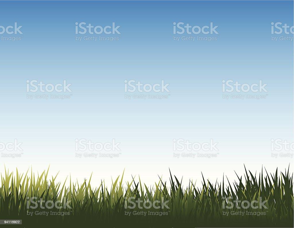 summer landscape vector art illustration