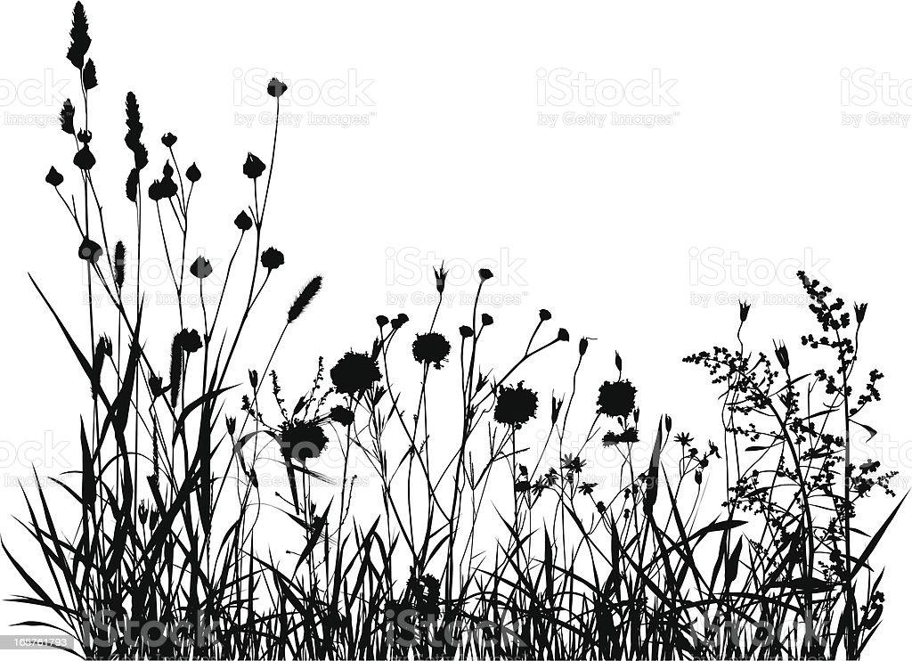 Summer Meadow Silhouette vector art illustration