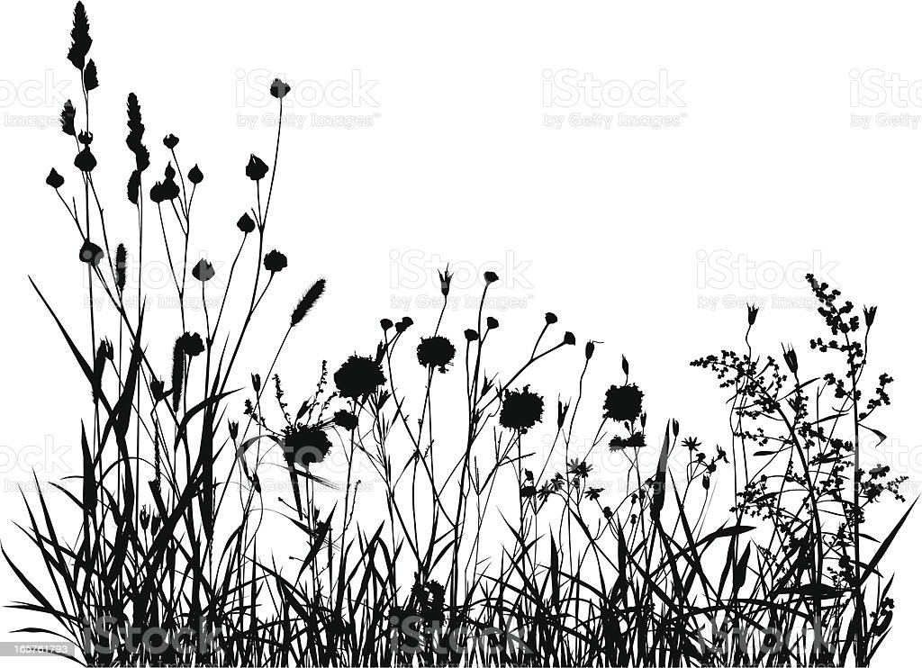 Summer Meadow Silhouette vector art illustration