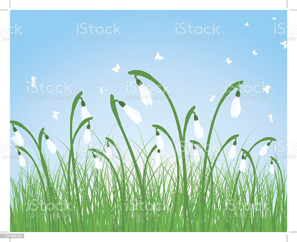 Summer meadow royalty-free stock vector art