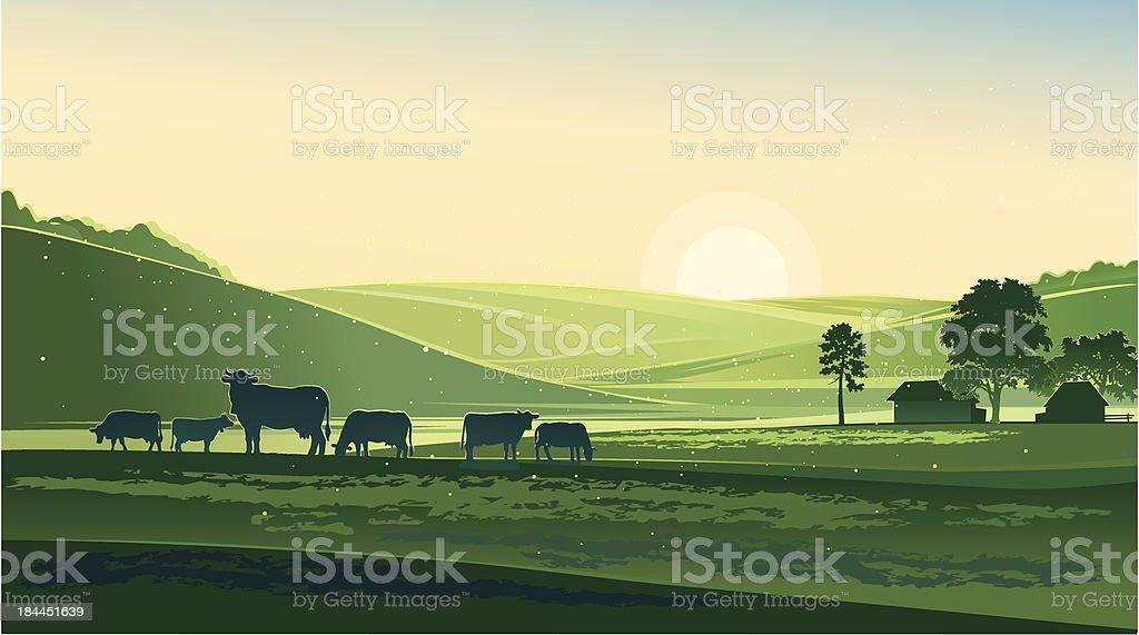 Summer morning vector art illustration