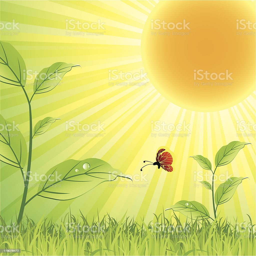 summer nature royalty-free stock vector art