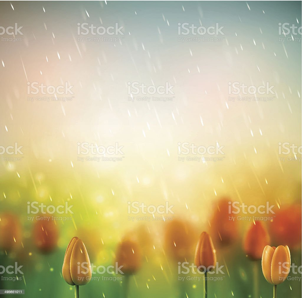 Summer rain vector art illustration