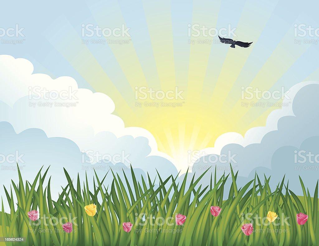 Summer Serenity royalty-free stock vector art