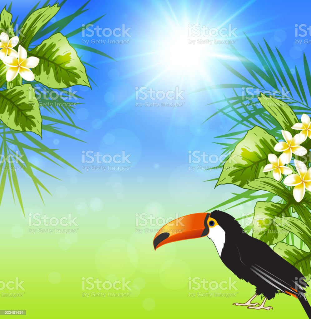 Summer background with green tropical leaves and toucan. Vector...