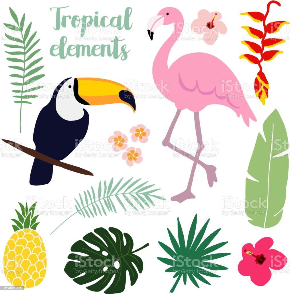 Summer tropical elements. Toucan and flamingo bird. Palm leaves. Vectors. vector art illustration